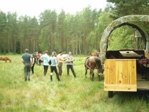 Leśnictwo Sowiniec - rajd po Borach Tucholskich 2004