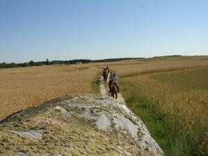 Ostrowo - rajd po Borach Tucholskich 2004