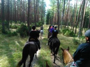 kierunek Rzeczka Zwierzynka - rajdy Qń 2015