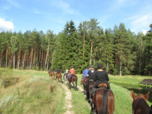 pojenie koni w Jeziorze Okonińskim - rajdy Qń 2015