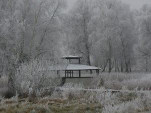 zima Qń 2010