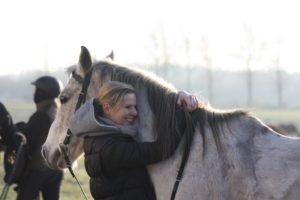 ośrodek jeździecki Qń